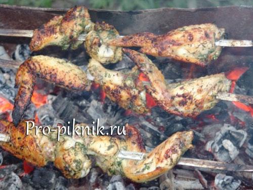 Шашлык из куриных крылышек на майские